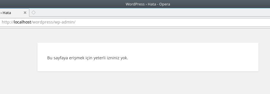 Wordpress Admin Paneline Girememe Sorunu Çözümü - Hamdi Çata